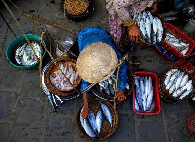 Ho Chi Minh to Hanoi Tour 10 days