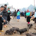 Ha Giang fair