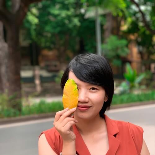 Best time to visit Hanoi Vietnam