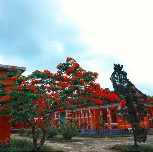 Quoc Hoc Hue High School