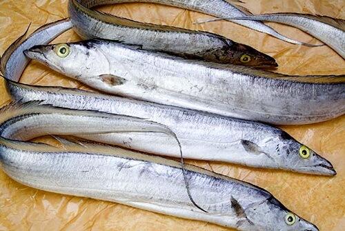 Vietnamese fish of Ca Ho