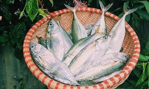 Vietnamese fish of Pompano