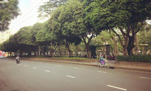 Le Van Tam Park
