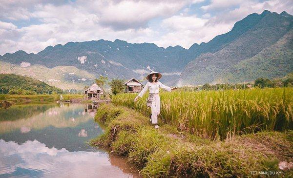 mai chau rice field
