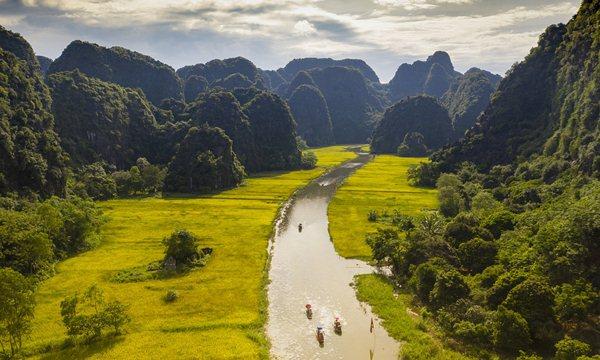 Tam Coc Rice Field