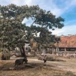 village communal temple