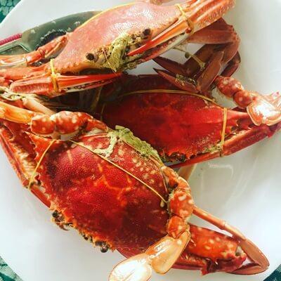 ham ninh crab